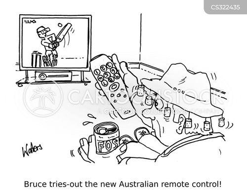 cricket game cartoons and comics