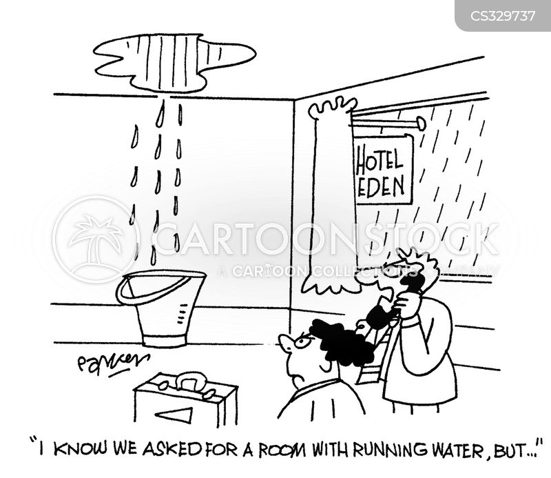 leaking roof cartoons and comics