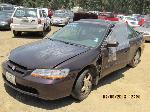 Lot: 80660 - 1998 Honda Accord