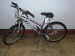 Lot: 02-16966 - Magna Grand Ledge Bike