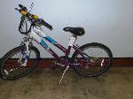 Lot: 02-16987 - Schwinn Sidewinder  Bike