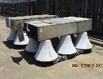 Lot: 2 - (2) Outdoor Siren Trees