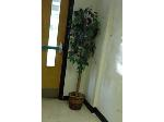 Lot: 13.HOUSTON1 - (5) ARTIFICIAL TREES