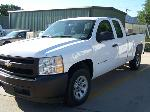 Lot: 1 - 2008 Chevy C1500 Pickup