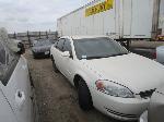 Lot: 05-286661  - 2007 Chevrolet Impala