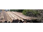 Lot: 02-18178 - (70 approx) Scrap Drill Pipes