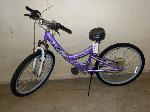 Lot: 02-18248 - Pacific Evolution Bike