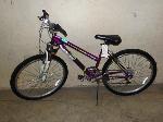 Lot: 02-18272 - Roadmaster Granite Peak Bike