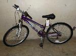 Lot: 02-18277 - Roadmaster Granite Peak Bike