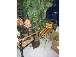 Lot: 27 - Ficus Trees, Magazine Rack, Podium