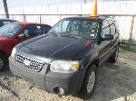Lot: 713-A10350 - 2005 FORD ESCAPE SUV