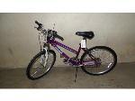 Lot: RL 02-18084 - Roadmaster Granite Peak Bicycle