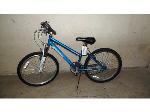 Lot: RL 02-18114 - Roadmaster Granite Peak Bicycle