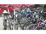 Lot: RL 02-18283 - (12) Bikes