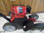 Lot: A5462 - Troy-Bilt 4-Cycle Gas Edger