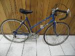 Lot: A5480 - Pinnacle Free Spirit 12 Speed Bike