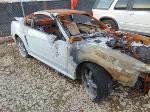 Lot: B607406 - 2000 FORD MUSTANG
