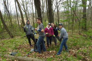 Students work in LVC's wetlands preserve