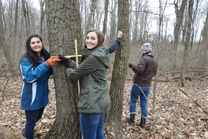 Students gather measurements in the Wood Thrush Research Preserve