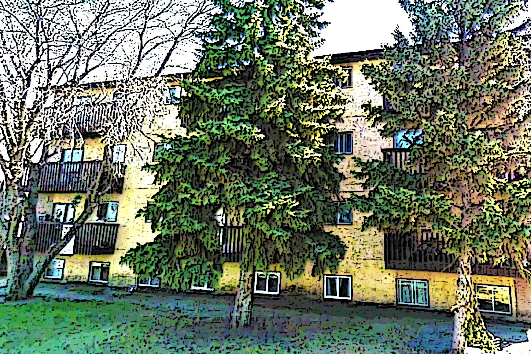 cheap 1 bedroom apartments in chicago gardenia