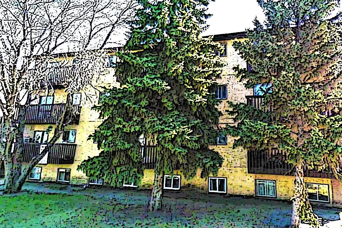 Saskatoon 2 bedroom Apartment For Rent