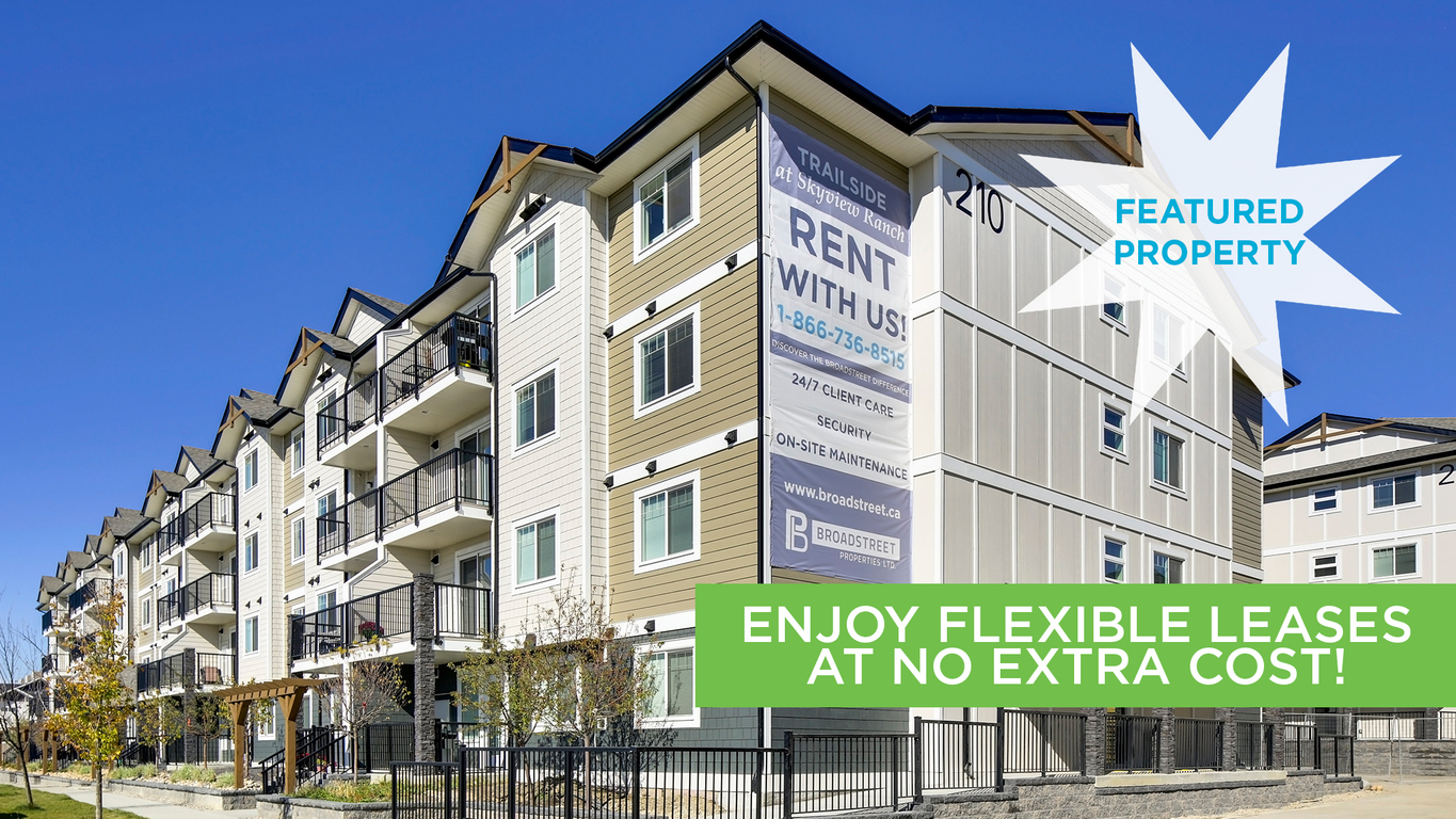 calgary north east one bedroom apartment for rent ad id