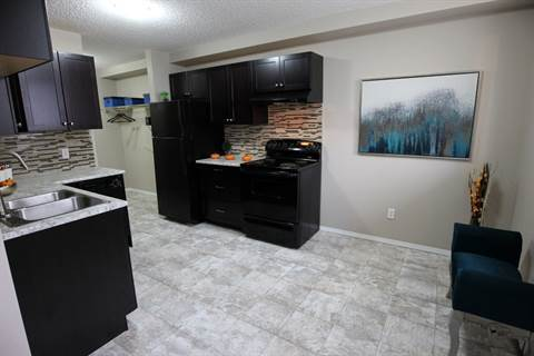 Edmonton South West 3 bedroom Apartment For Rent