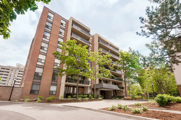 One Bedroom Mississauga Apartment For Rent Ad Id