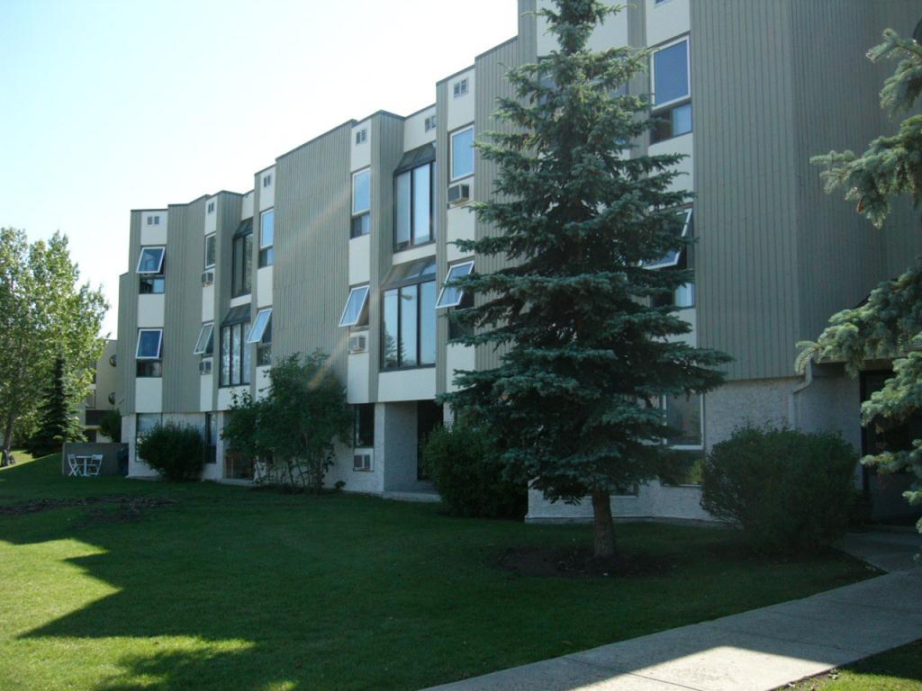 edmonton west one bedroom apartment for rent ad id fpg