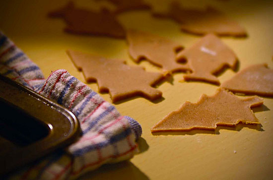 Making Gingerbread cookies in your Edmonton apartment