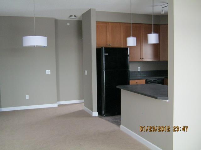 Edmonton Du Sud-est 1 chambre à coucher Appartement À louer
