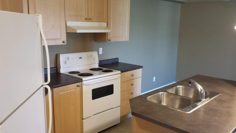 Edmonton Du Sud-est 2 chambre à coucher Appartement À louer