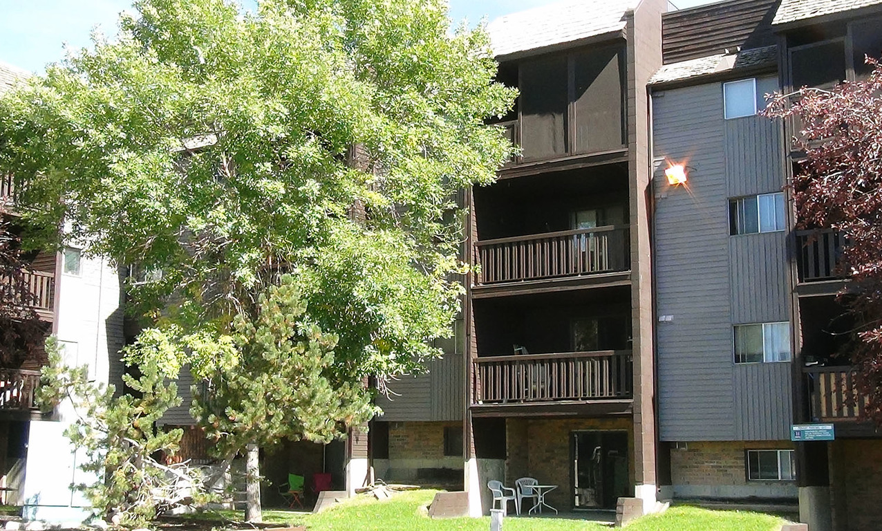 Calgary South East 1 bedroom Apartment