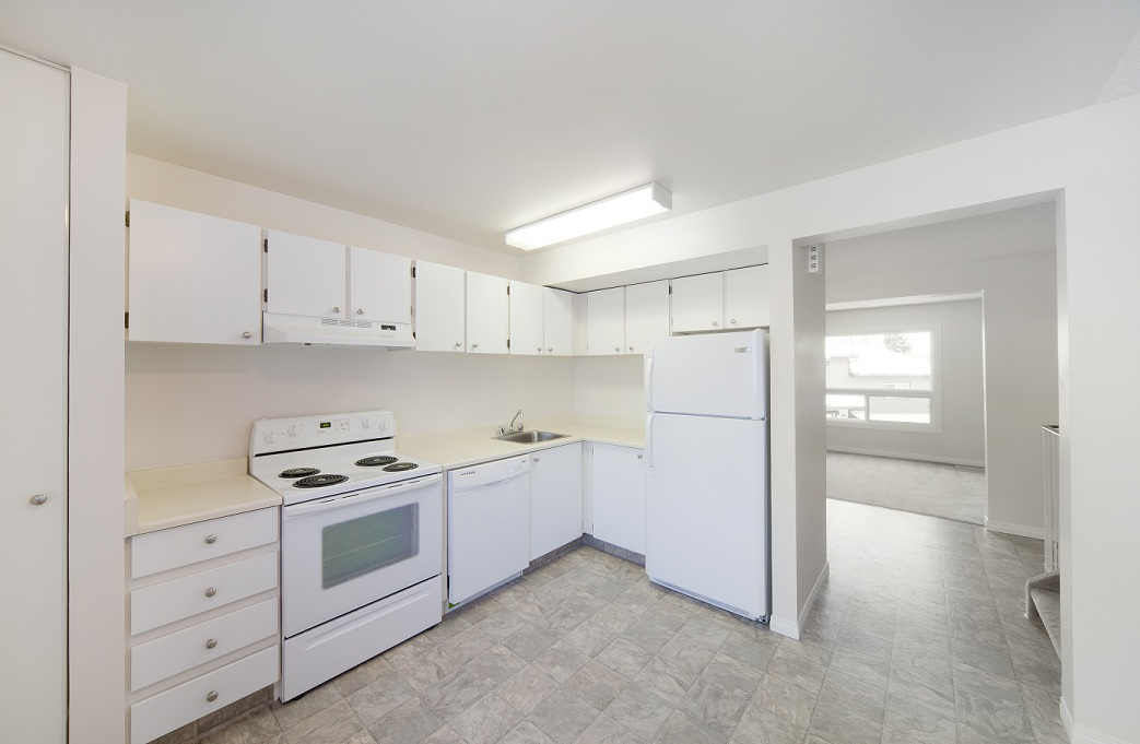 edmonton downtown apartment for rent 3 bedrooms pets allowed