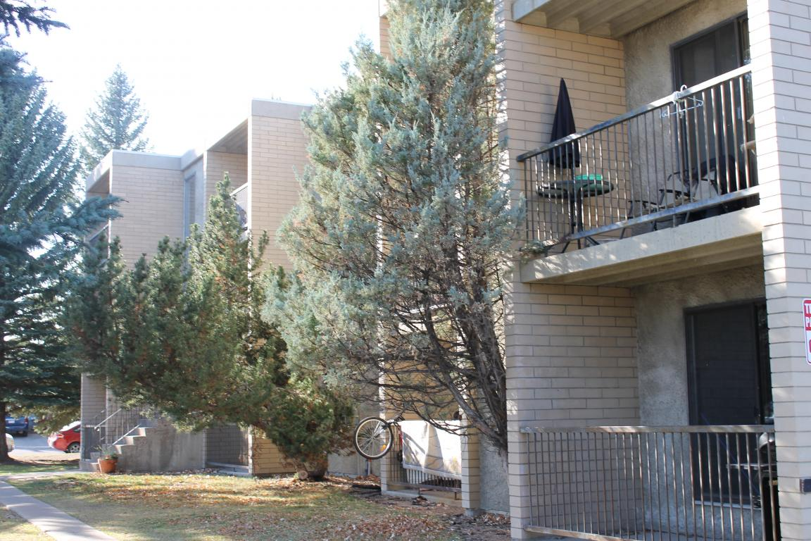 Lethbridge 1 bedroom Apartment For Rent