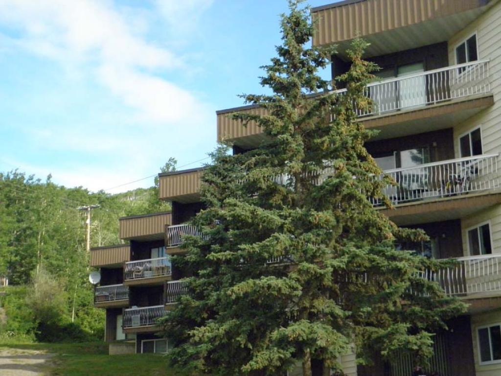 Chetwynd 1 bedroom Apartment For Rent