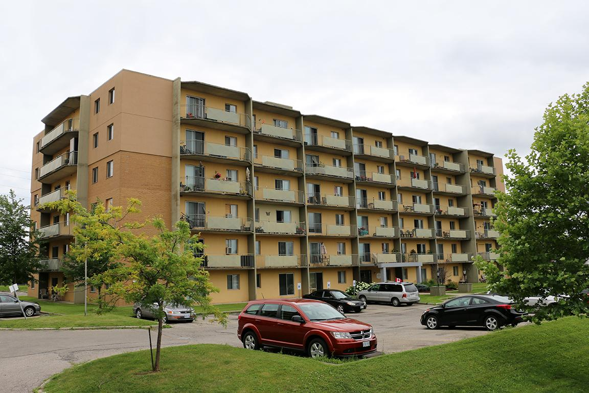One Bedroom Brantford Apartment For Rent Ad Id