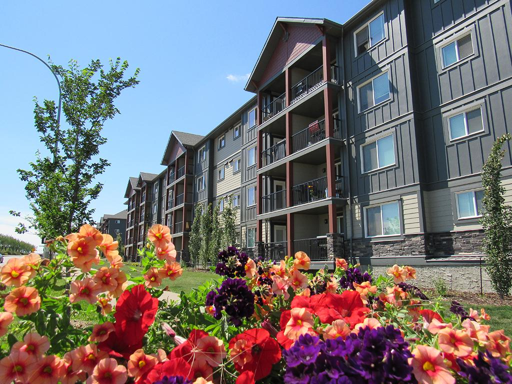Edmonton South West 2 bedroom Apartment