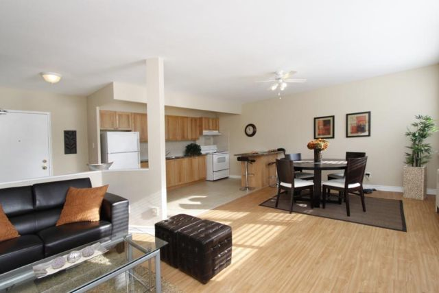 Hamilton East 2 bedroom Apartment For Rent