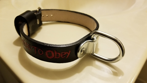 I Promise To Obey: Gothic-Style Leather Collar with D-Ring (BDSM Jewelry)