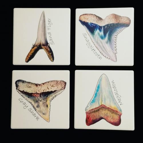 Fossil Shark Teeth Coasters - Set of Four
