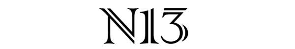 N13 ONLINE