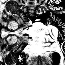 """Regosphere / The Vomit Arsonist 7"""""""
