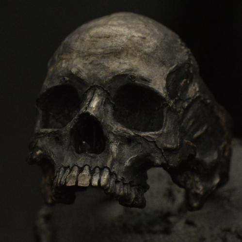Gen 2 Large Half Jaw • .925 Sterling Silver • Skull Ring •