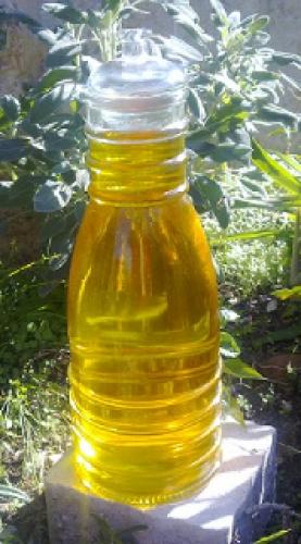 Moringa Oil???