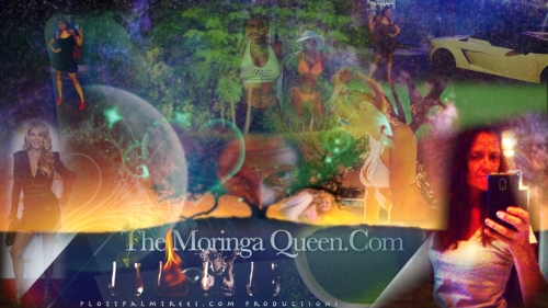 ∆ The Moringa Queen . Com New Site