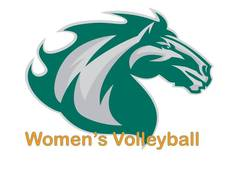 Womens_V-ball_Logo_small.jpg (225x169)px