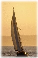 elizabeth_city_sail.jpg (150x224)px