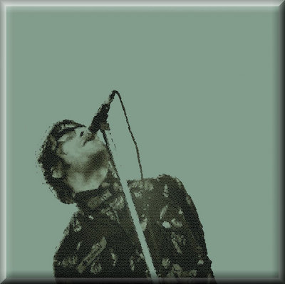 Liam Gallagher Canvas Art Oasis Picture by See More - print