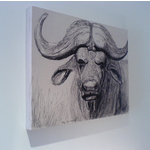 Cape Buffalo, Canvas Art picture, Black & White Sketch by Brian Hollingworth - print